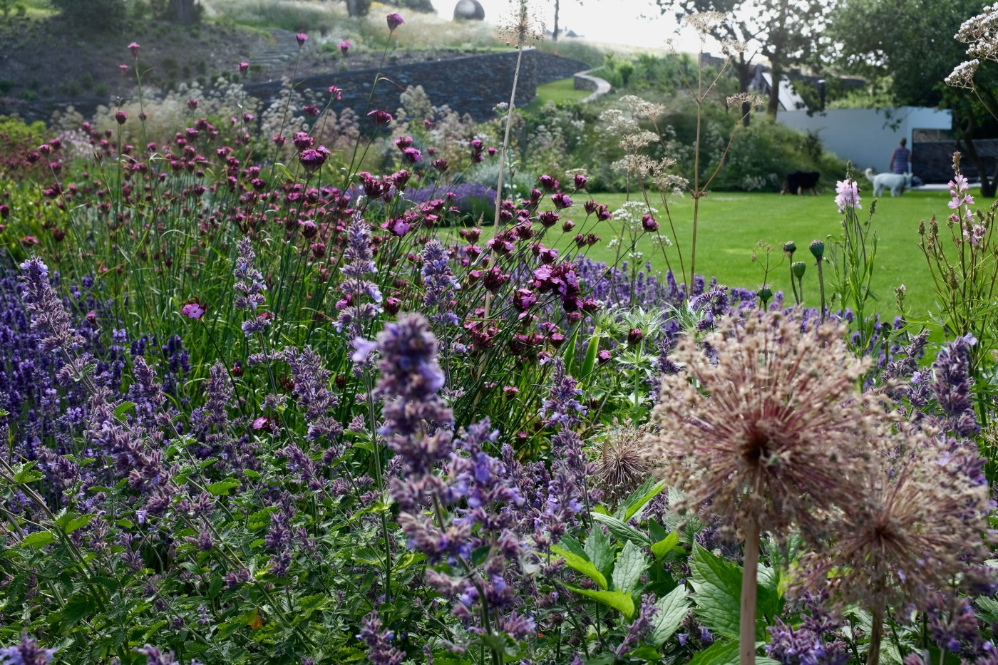 Cornwall garden design